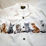 画像8: [ UNIVERD72(ユニバード72)]  猫プリント アロハシャツ 40836 ポリエステル (8)