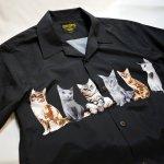 画像4: [ UNIVERD72(ユニバード72)]  猫プリント アロハシャツ 40836 ポリエステル (4)